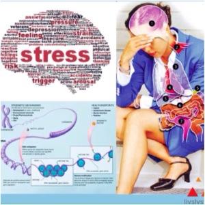 Stressbilde_Livslyst & Motivasjon